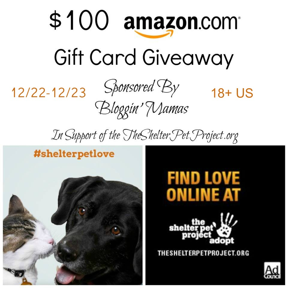 $100 Amazon Giftcard Giveaway in support of Shelter Pets