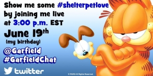 Shelter Pet Project and Garfield Twitter Chat 6-19-15 at 3p EST