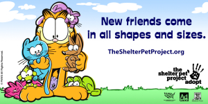 Garfield Showing some Shelter Pet Love