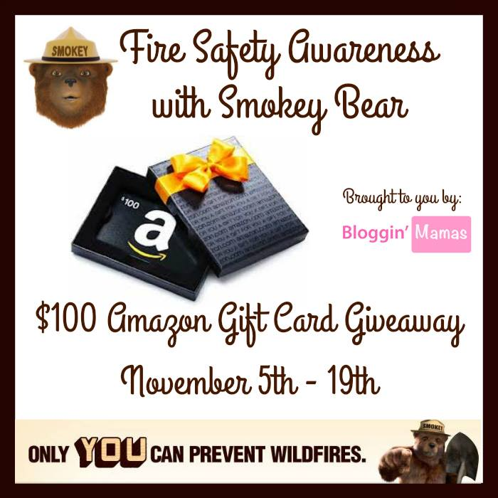 Fire Safety Awareness Giveaway with Smokey Bear- US 18+. Ends 11-19-15.