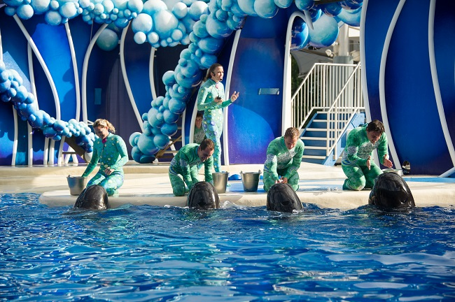 Sea World Trainer Talks
