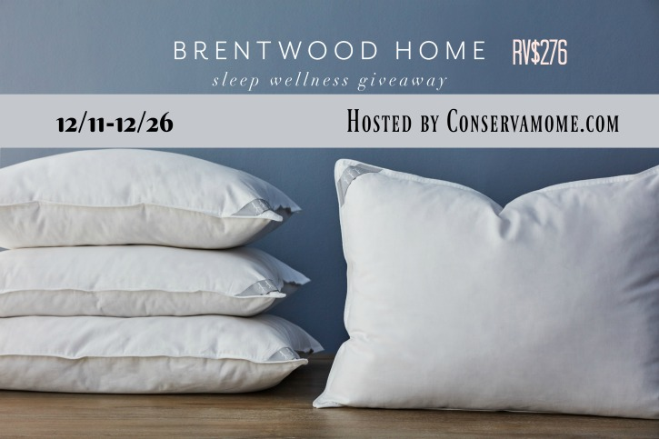 Giveaway Brentwood Home pillows